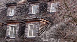 Gonty naturalne jako pokrycie dachowe